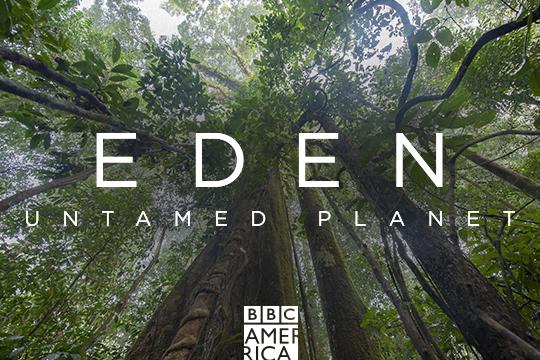 BBCA: Eden Untamed [New Series]